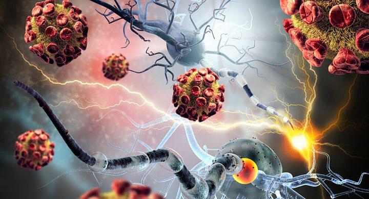 أبرز المعلومات المؤكدة والنقاط المجهولة عن فيروس كوفيد-19