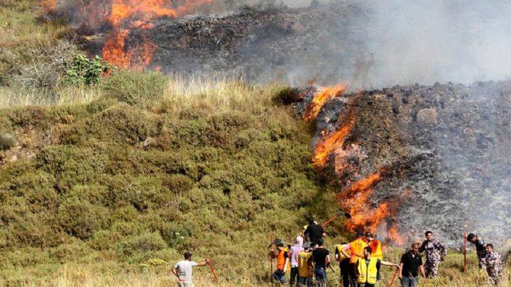 مستوطنون يضرمون النار بأشجار الزيتون في حوارة