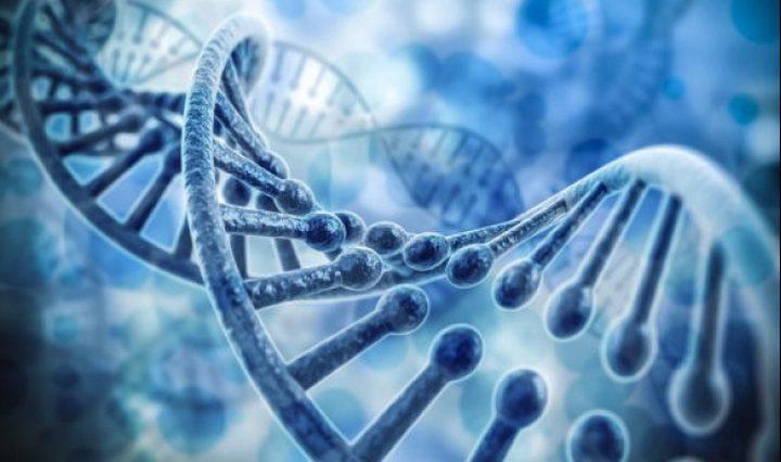 """دراسة: فيروس كورونا وصلنا عبر""""إنسان نياندرتال"""""""