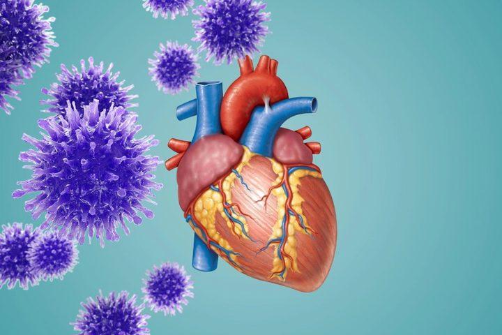 دراسة: أكثر من نصف مرضى كورونا يعانون من تلف عضلة القلب