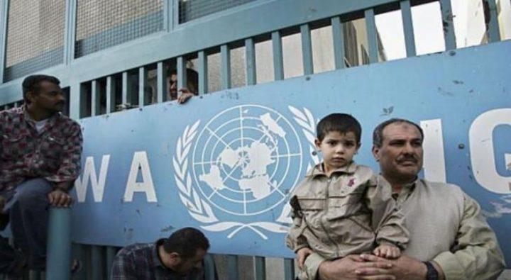 """""""الأونروا"""" تبدأ بصرف مساعدات مالية للأسر الفقيرة في غزة"""