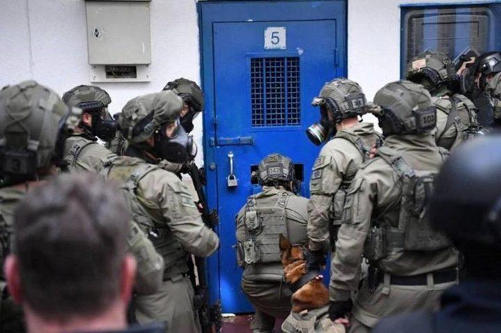 """نادي الاسير: قوات القمع تقتحم قسم (5) في سجن """"ريمون"""""""