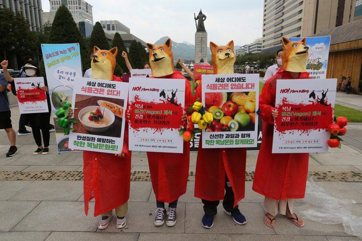 بدء موسم تناول لحوم الكلاب وشرب حسائها في كوريا الجنوبية