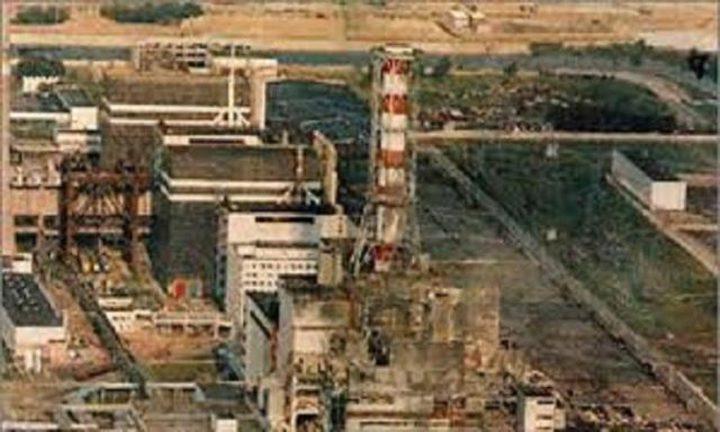 مفاعل تشرنوبل.. إكتشاف فطريات آكلة للإشعاعات النووية والكونية