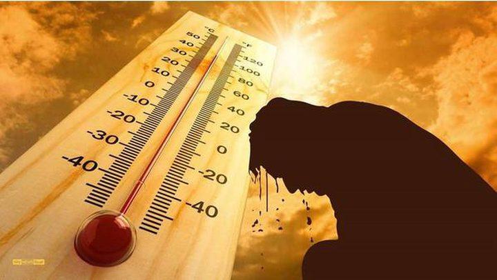 أجواء شديدة الحرارة حتى نهاية الاسبوع