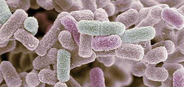 العلماء يستعينون بعلاج عمره ألف سنة لمواجهة البكتيريا