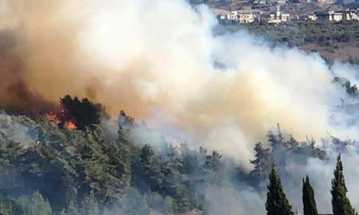 اندلاع حريق في منطقة وادي عارة