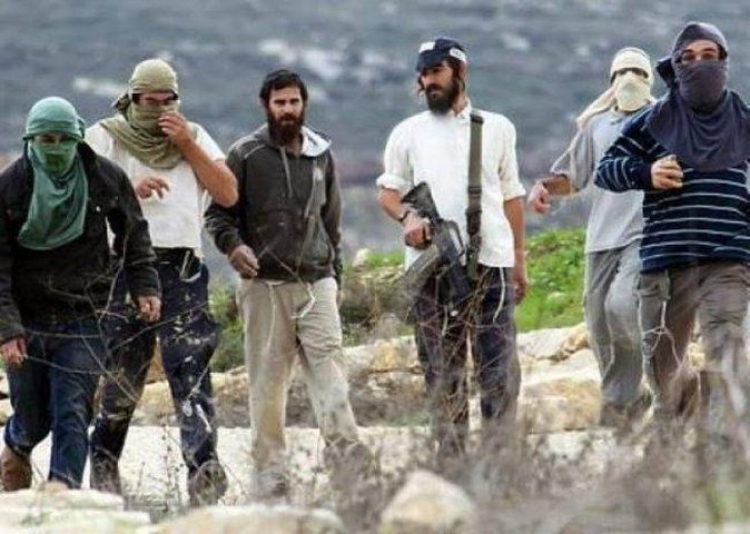 تحذير من تصاعد هجمات المستوطنين ضد المواطنيين وممتلكاتهم