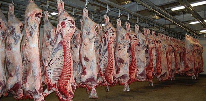 الاقتصاد: سحب عينات من اللحوم المجمدة المستوردة للتأكد من سلامتها