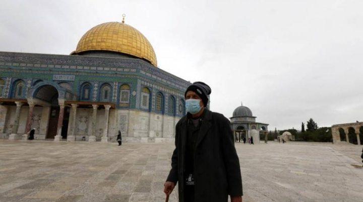 """الهدمي: ارتفاع خطير بأعداد المصابين بـ""""كورونا"""" في القدس"""