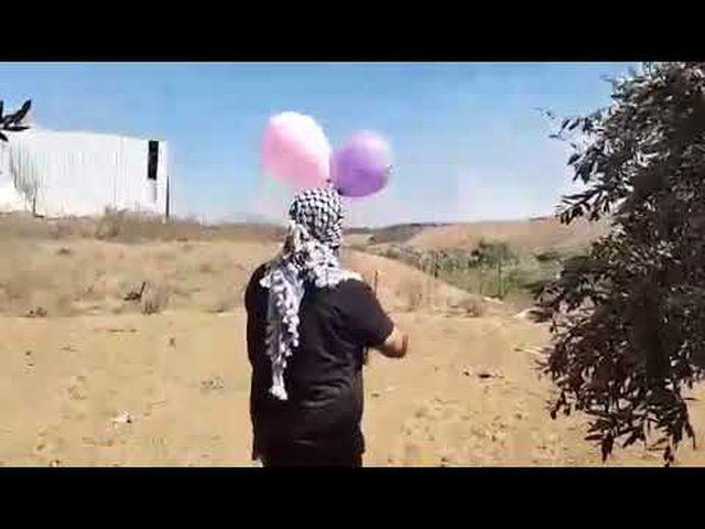 محلل سياسي: غزة أمام ثلاث سيناريوهات مع تجدد إطلاق البالونات