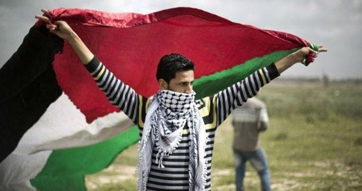 1.14 مليون شاب في فلسطين يشكلون حوالي خمس المجتمع