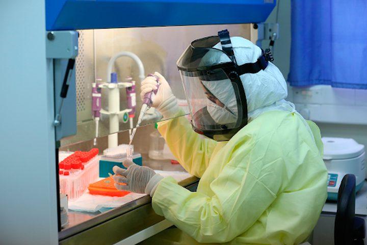 تسجيل 23 إصابة جديدة بفيروس كورونا في قلقيلية