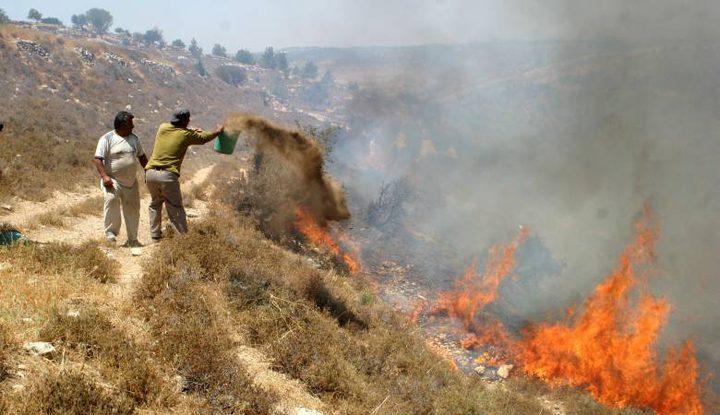 نابلس: مستوطنون يضرمون النار بأراضي عصيرة القبلية