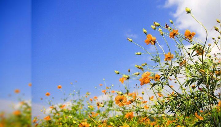 حالة الطقس: أجواء حارة ودرجات حرارة اعلى من معدلها السنوي