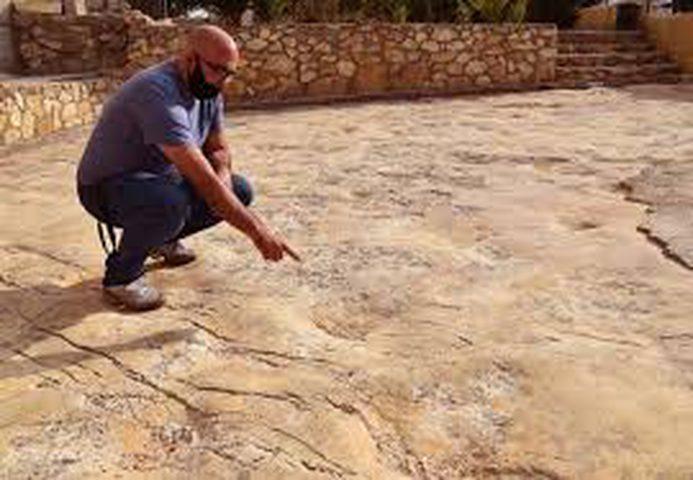 الباحث عويس: اكتشاف اثار الديناصورات العاشبة في الخليل