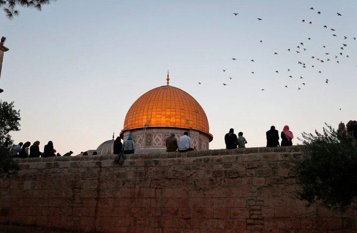 سلطة جودة البيئة:فلسطين تتصدى لجائحة كورونا والاحتلال معا