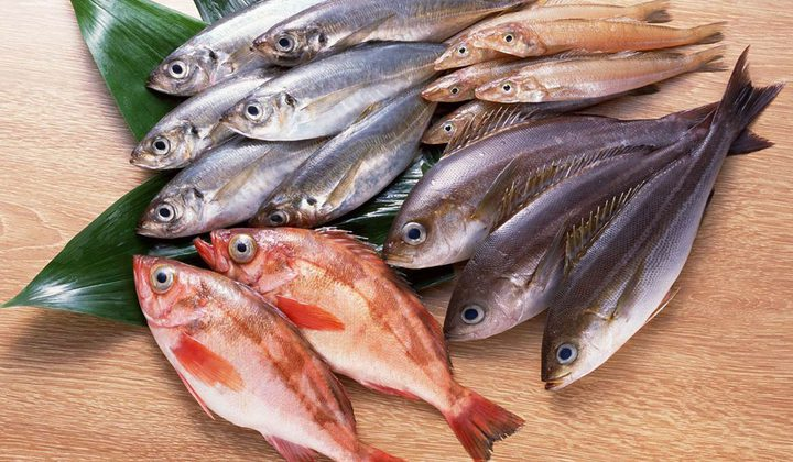 ما تفسير حلم السمك النيء؟