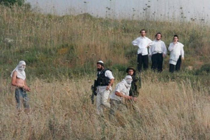 مواطنون يتصدون لمستوطنين حاولوا الاستيلاء على أرض شرق الخليل