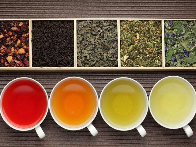 تعرفوا على فوائد وأضرار تناول مختلف أنواع الشاي