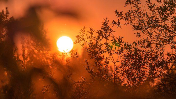 الطقس: استمرار تأثير الموجة شديدة الحرارة