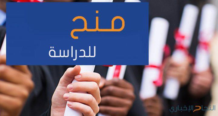 """""""التعليم العالي"""" تعلن عن منح دراسية في مصر وفيتنام"""