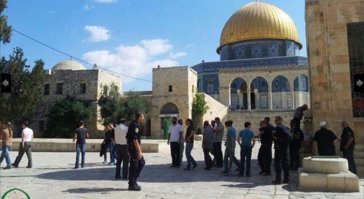 الاحتلال يبعد أربعة موظفي أوقاف عن المسجد الأقصى
