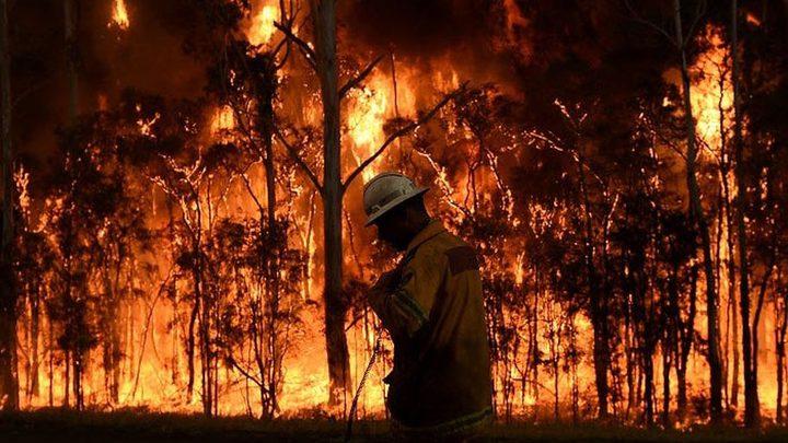العالم يشهد رقما قياسيا في عدد الاعاصير وحرائق الغابات