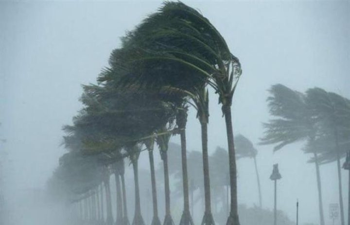 فنلندا: إعصار يقطع الكهرباء عن 60 ألف منزل