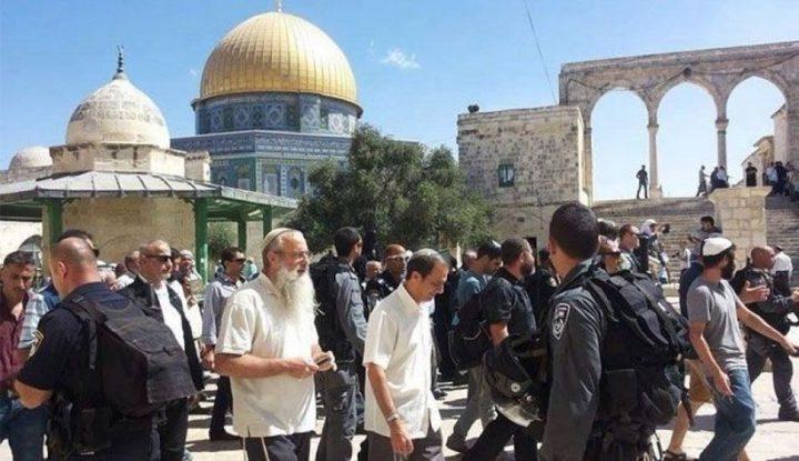عشرات المستوطنين يقتحمون باحات الأقصى بحماية من شرطة الاحتلال