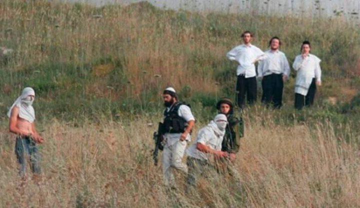 اصابتان خلال هجوم للمستوطنين على مزارع تربية دواجن جنوب نابلس