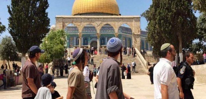 """مستوطنون يقتحمون الأقصى و""""جماعات الهيكل"""" تدعو لتغيير واقعه"""