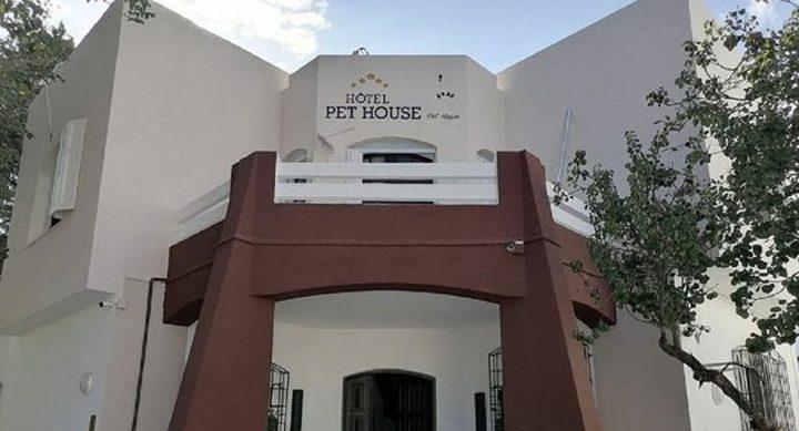 تونس: افتتاح أول فندق 5 نجوم لرعاية الحيوانات الأليفة