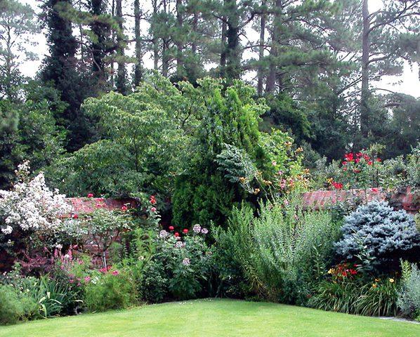 إحصائية: 39 % من نباتات العالم مهددة بالانقراض