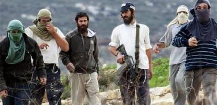 نابلس: إصابة مواطنين إثنين برضوض بعد اعتداء مستوطنين عليهما