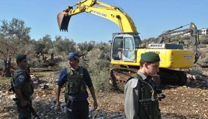 الخارجية:الاحتلال يكشف عنصريته ضد رمزية شجرة الزيتون