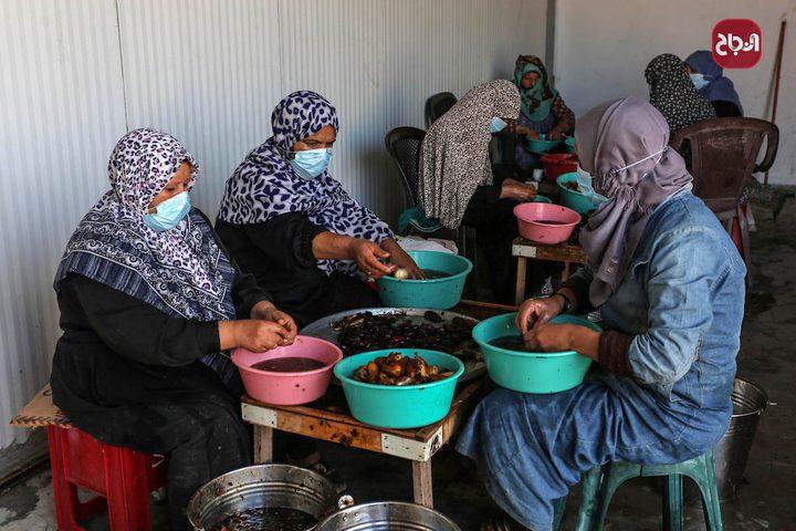 نساء يعملن في مصنع لانتاج عجوة التمر في دير البلح وسط قطاع غزة