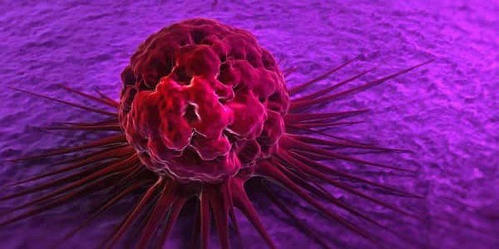 ما هي الخضار التي تعد حصن منيع ضد داء السرطان ؟