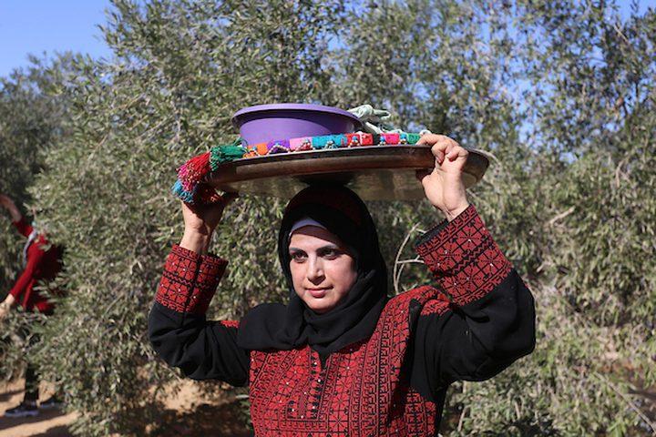 إمرأة فلسطينية تشارك في حفل افتتاح موسم الزيتون في بلدة خزاعة ، شرق خان يونس جنوب قطاع غزة