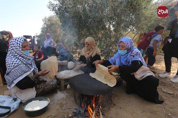 سيدات يصنعن الخبز خلال موسم قطف الزيتون بغزة