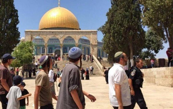 القدس: مستوطنون يؤدون طقوسا تلمودية في سوق القطانين التاريخي