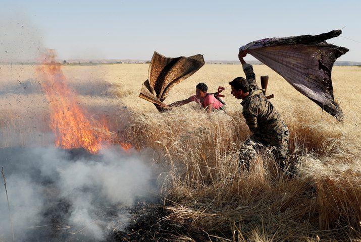 سوريا: إخماد كافة الحرائق البالغ عددها 156
