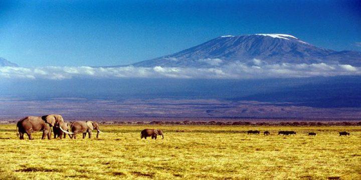 شاهد اندلاع حريق في أعلى قمة جبل في إفريقيا