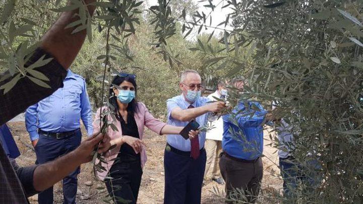 د. النتشة يزور كلية الزراعة والطب البيطري في خضوري
