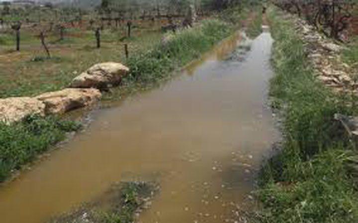 مستوطنون يغرقون اراضي المواطنين شرق نابلس بالمياه العادمة