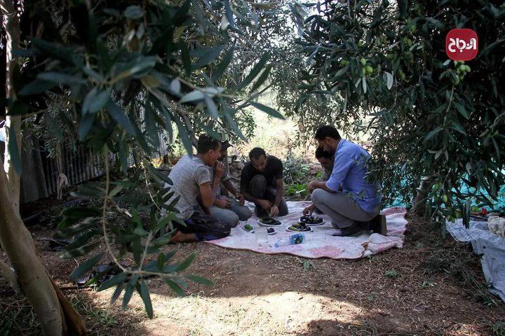مواطنون يتناولون وجبة غداء