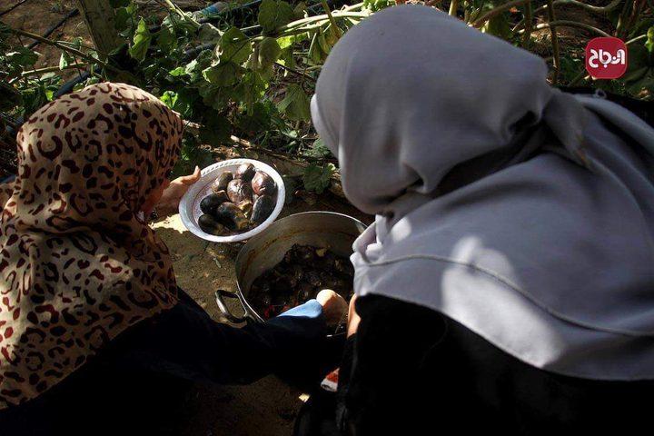 نساء يحضرن الطعام