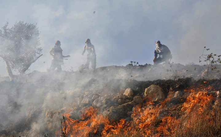 نشوب حريق كبير في أحراش وادي القف غرب الخليل