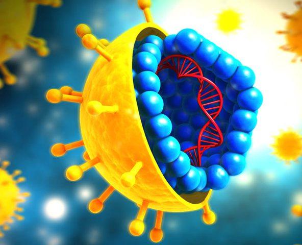 دراسة: المناعة ضد كورونا لا تستمر أكثر من بضعة أشهر
