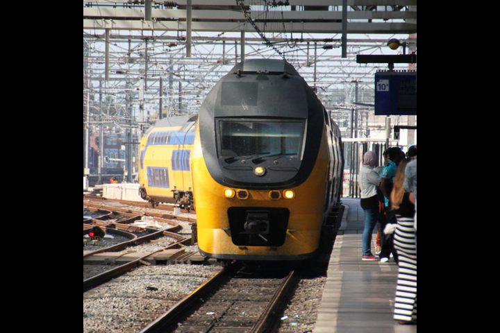 هولندا: ذيل حوت ينقذ قطار من كارثة مدمرة